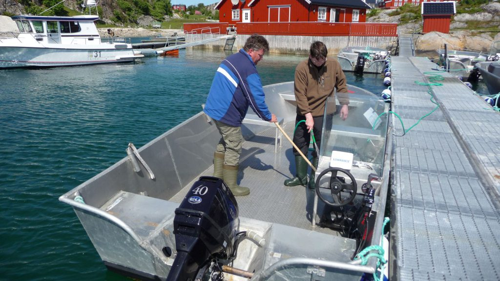 Säubern des Bootes