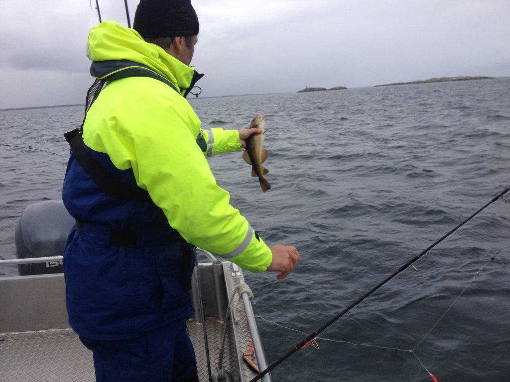 Erster Fisch