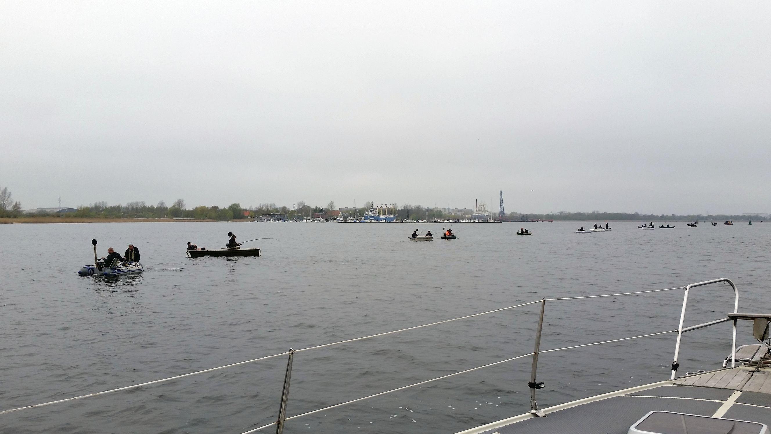 Heringsfischer auf der Warnow