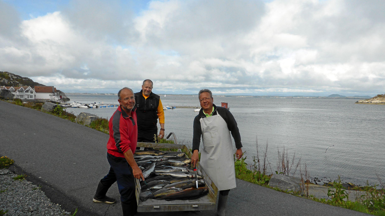 Transport unseres Fang's zum SløtyHuset (Filetierhaus)