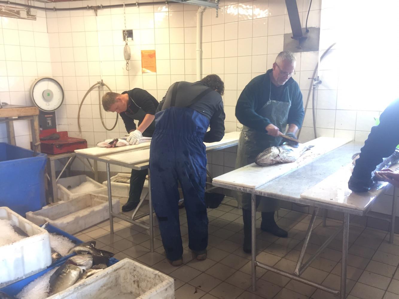 Fischverarbeitung - Arbeitsstation Filetieren