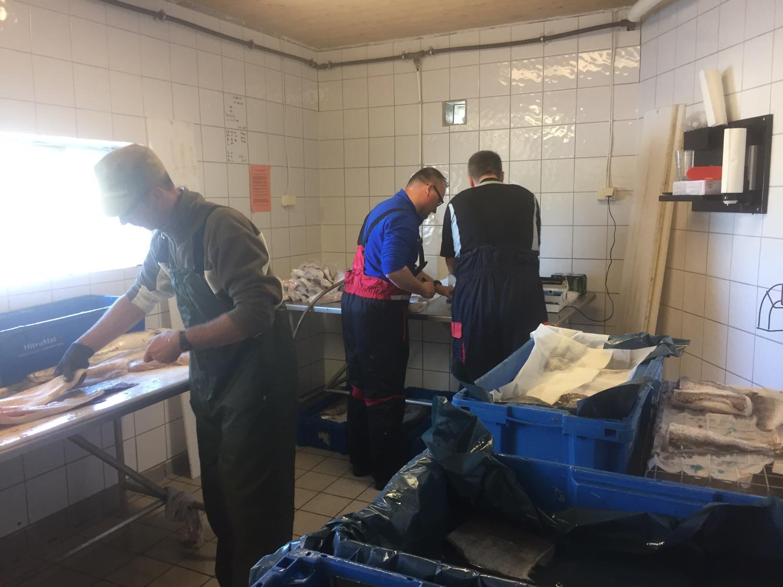 Fischverarbeitung - Einschweißen
